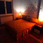 Apartman Beograd 5